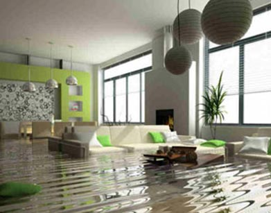 emergency storm damage repair Holly Springs basement water damage